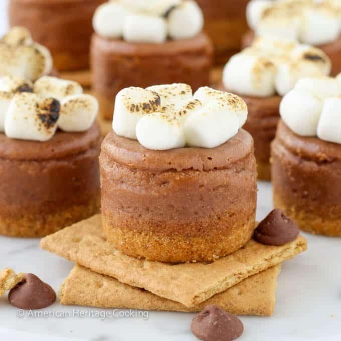 Mini Smores Milk Chocolate Cheesecakes