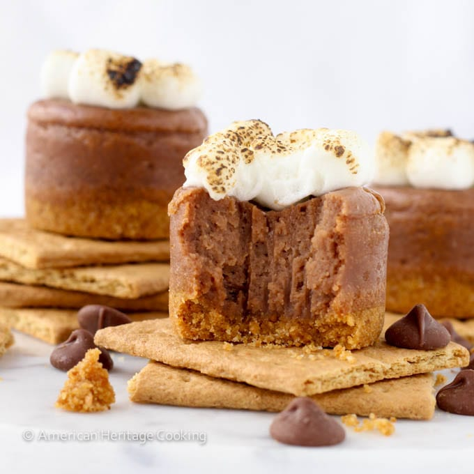 Mini Smores Milk Chocolate Cheesecakes