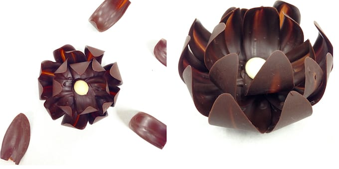 Culinary School Update 4 - Chocolate Flower