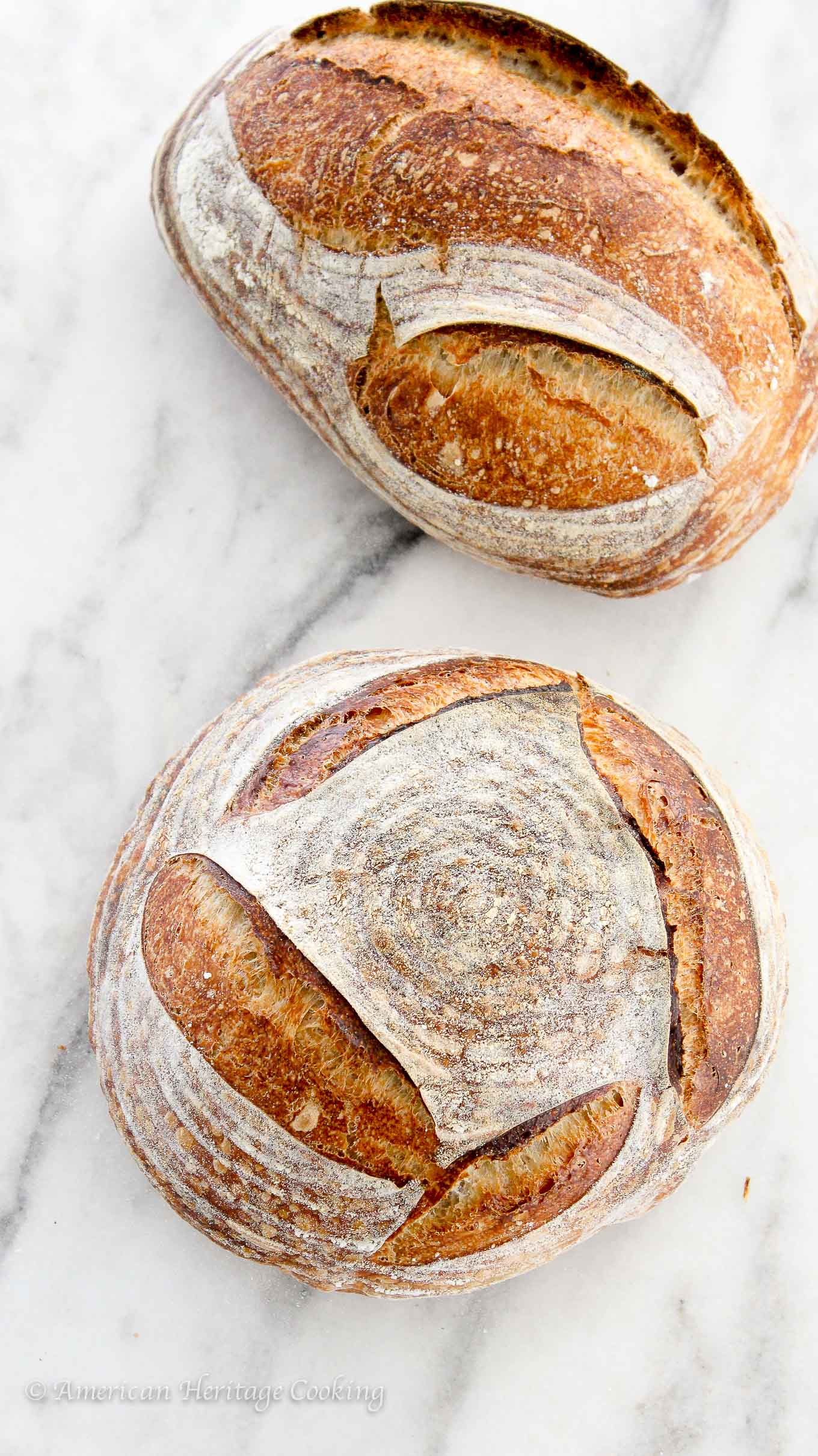Basic Sourdough Bread Tutorial