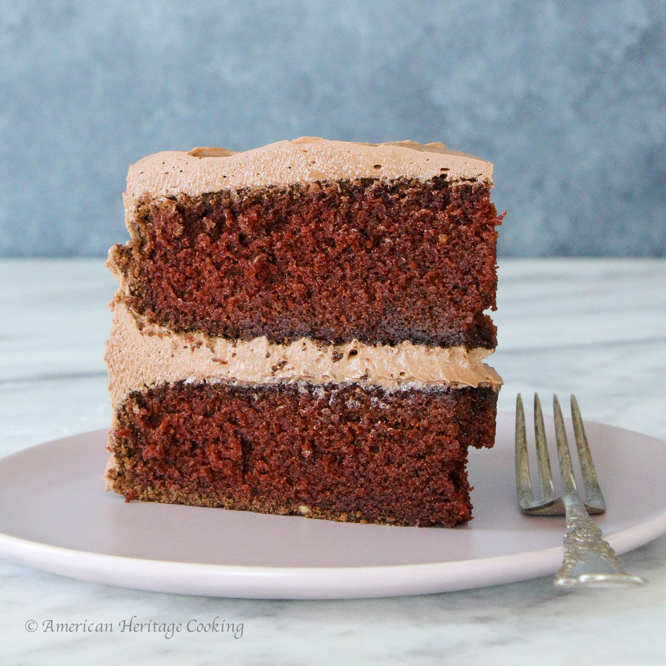 This Chocolate Mayonnaise Cake is tender, moist and perfectly rich. Slather it with a silky chocolate cream cheese buttercream for the perfect pair!