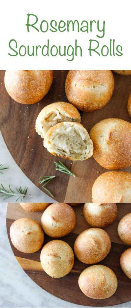 These Rosemary Sourdough Rolls are soft on the inside and crunchy on the outside! They are leavened with sourdough starter and have a perfect rosemary flavor!